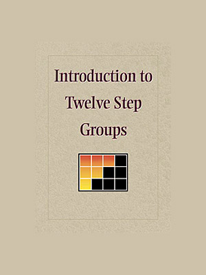 Introduction To Twelve Step Groups